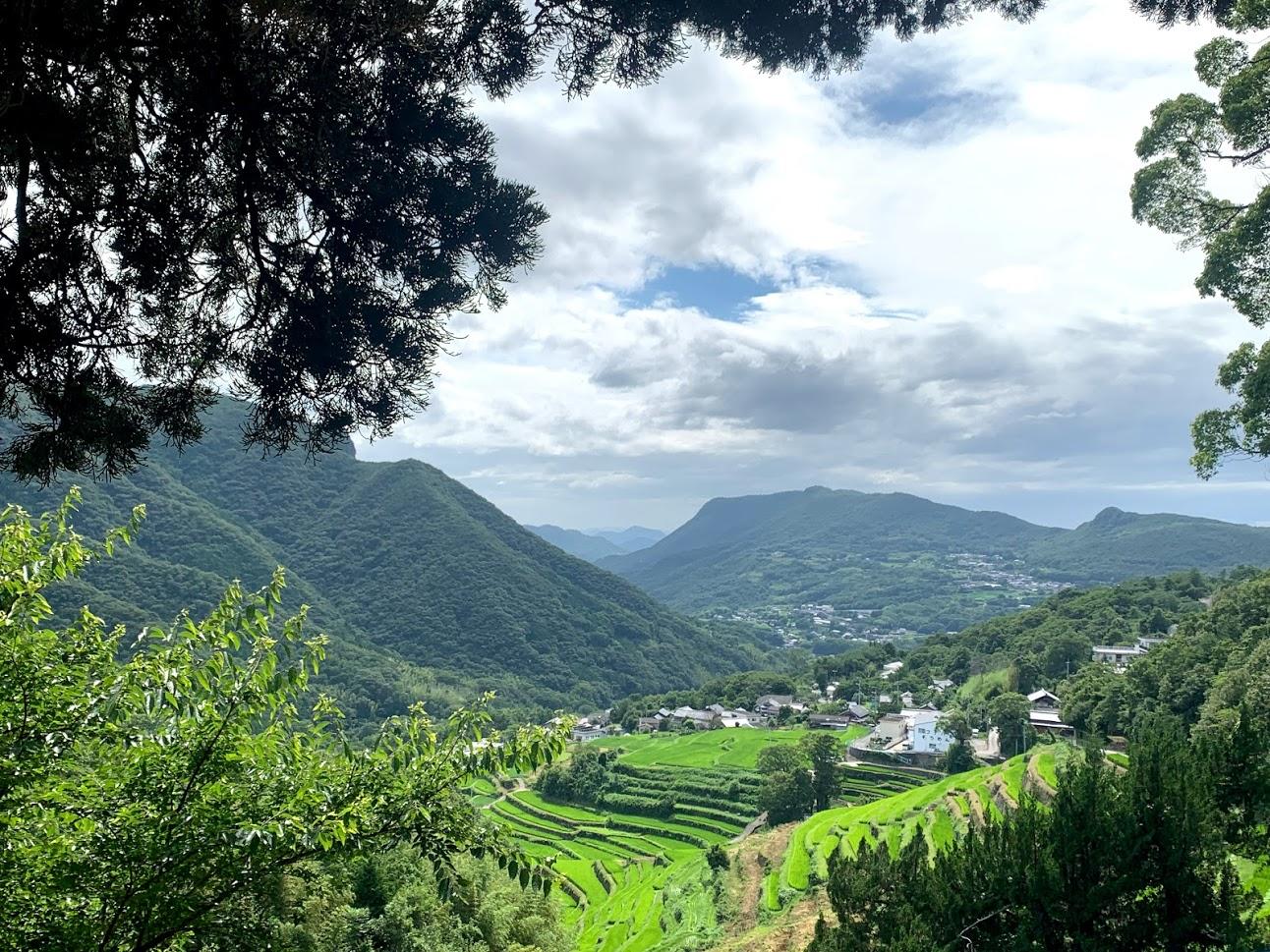 湯舟山から中山千枚田を見下ろす